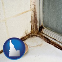 idaho map icon and black mold growing in a shower stall