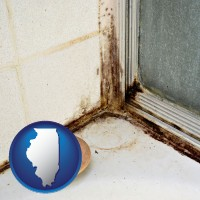 illinois map icon and black mold growing in a shower stall