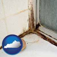 kentucky map icon and black mold growing in a shower stall