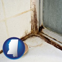 mississippi map icon and black mold growing in a shower stall