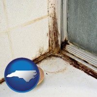 north-carolina map icon and black mold growing in a shower stall
