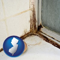 new-jersey map icon and black mold growing in a shower stall