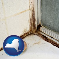 new-york map icon and black mold growing in a shower stall