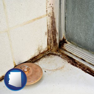 black mold growing in a shower stall - with Arizona icon