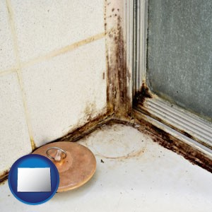 black mold growing in a shower stall - with Colorado icon