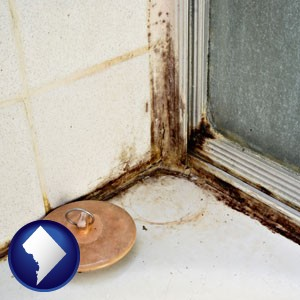 black mold growing in a shower stall - with Washington, DC icon