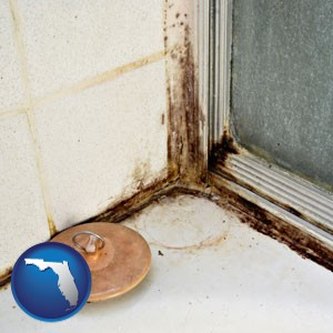 black mold growing in a shower stall - with Florida icon
