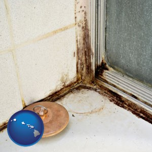 black mold growing in a shower stall - with Hawaii icon