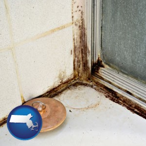 black mold growing in a shower stall - with Massachusetts icon