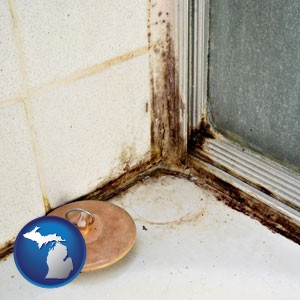 black mold growing in a shower stall - with Michigan icon