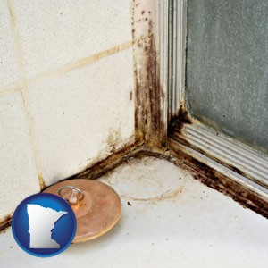 black mold growing in a shower stall - with Minnesota icon