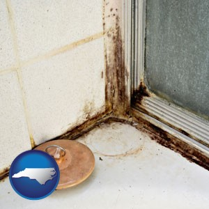 black mold growing in a shower stall - with North Carolina icon