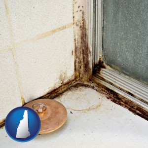 black mold growing in a shower stall - with New Hampshire icon
