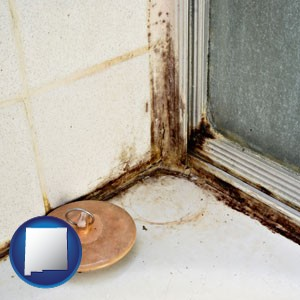 black mold growing in a shower stall - with New Mexico icon
