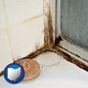 black mold growing in a shower stall - with Ohio icon