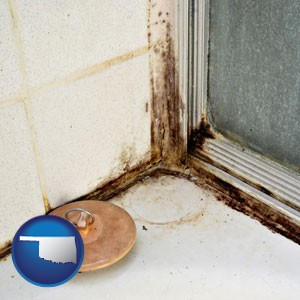 black mold growing in a shower stall - with Oklahoma icon