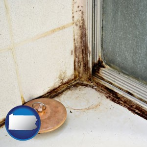 black mold growing in a shower stall - with Pennsylvania icon