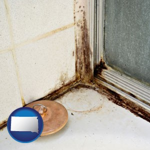 black mold growing in a shower stall - with South Dakota icon