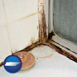 black mold growing in a shower stall - with Tennessee icon