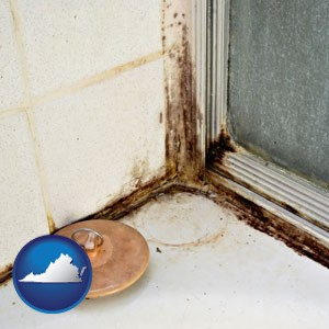 black mold growing in a shower stall - with Virginia icon