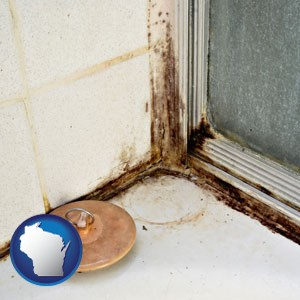 black mold growing in a shower stall - with Wisconsin icon